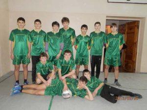 volejbol-2013