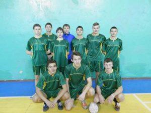 volejbol-2014