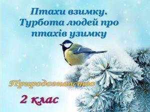 ptaxi-vzimku-1