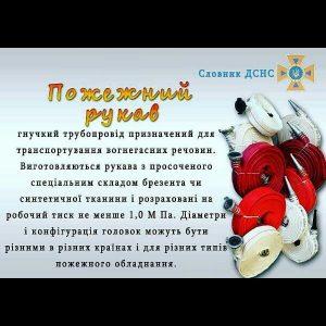 IMG_66201810158